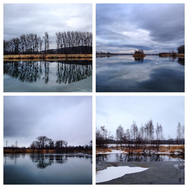 IMG_4447_Fotor_Collage